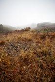 Foggy landscape, Spain — Stock Photo