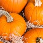 Miniature pumpkins — Stock Photo #54085325