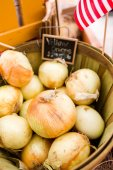 Cebola fresca orgânica — Foto Stock
