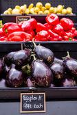 Purple Eggplant — Stockfoto