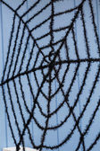 Black spider web — Stock Photo