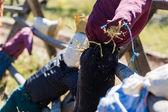 Handmade scarecrows — Stock Photo