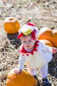 Roztomilé dítě v Halloween kostýmu — Stock fotografie