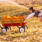 Girl helping to take large orange pumpkins home — Stock Photo #56394287
