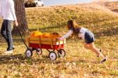 Girl helping to take large orange pumpkins home — Stock Photo