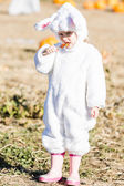 Cute kid in Halloween costume of a bunny — Stock Photo