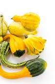 Fresh Pumpkins — Stock Photo