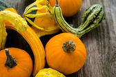 Organic Pumpkins on wooden table — Stock Photo