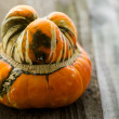Organic orange Pumpkin — Stock Photo #56590277