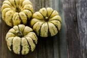 Healthy organic Pumpkins — Stock Photo