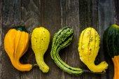 Fresh organic pumpkins — Стоковое фото
