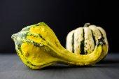 Miniature gourd — Stock Photo