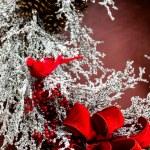 Christmas wreath on door — Stock Photo #57609041