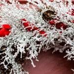 Christmas wreath on door — Stock Photo #57609073