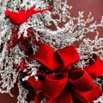 Christmas wreath on door — Stock Photo #57609093
