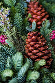 Christmas wreath close up — Stock Photo
