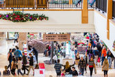 Typical North American mall on Black Friday shopping — Stockfoto