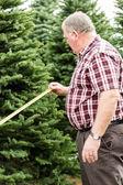 Man Christmas tree farm — Zdjęcie stockowe
