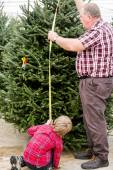 Family selecting a tree for Christmas — Stock Photo
