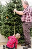 Rodina výběr strom pro vánoční — Stock fotografie