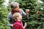 Mother and son Christmas tree farm — Stockfoto