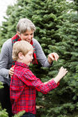 Mother and son Christmas tree farm — Stock Photo