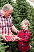Family at Christmas tree farm — Foto Stock