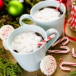 Hot chocolate with snowflake shaped of marshmallows. — Stock Photo #60641329