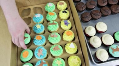 Baker putting multicolored cupcakes in box — Stockvideo