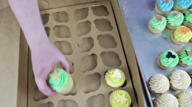 Baker putting multicolored cupcakes in box — Vídeo Stock