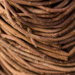 Garden twigs background — Stock Photo #64231527