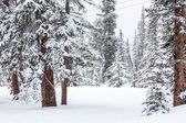 Ski resort at the end of the season — Stock Photo