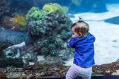 Girl toddler at fish aquarium — Stock Photo