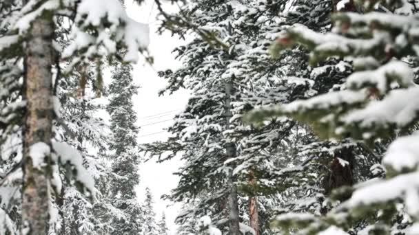 Loveland Pass, Colorado, USA — Vídeo de stock