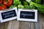 Légumes biologiques frais — Photo