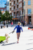 Typical walk with a dog in the city — Stock Photo