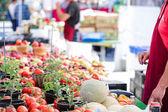 Latem rynku rolników na Main Street w Parker — Zdjęcie stockowe