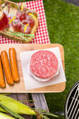 Summer picnic with small charcoal grill and hotdogs — Stock Photo