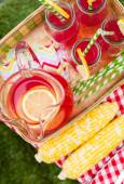 Summer picnic with lemonade — Stock Photo