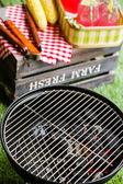 Small charcoal grill in the park. — Stock Photo