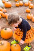 Girl at Pumpkin patch — Stock Photo