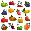 Fruits and Berries Collection — Stock Vector #52043585