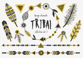 Tribal Design Elements Collection — Stock Vector