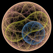 Symmetrical growth of bacteria — Photo