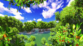 Red mangove shore — Stock Photo