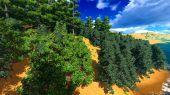 Siberian taiga — Stock Photo