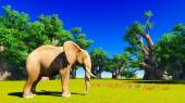 Elephant  in Africa — Stock Photo