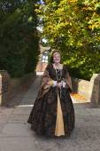 Lady in a medieval dress. — Stockfoto