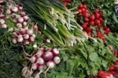 Otlar ve sebze süpermarket — Stok fotoğraf
