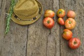 Red tomatoes from organic cultivation  — Stock Photo